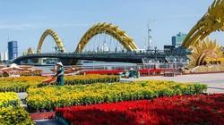 Đà Nẵng dự kiến chi 10 tỷ đồng để trang trí hoa, điện chiếu sáng phục vụ Tết 2021