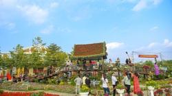 Hàng nghìn cây hoa rực rỡ tạo hình bản đồ Việt Nam tại lễ hội hoa Xuân Quan