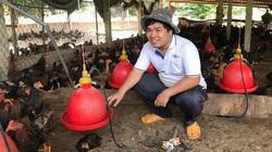 Bình Định: Giá gà ta tăng lên 40.000 đồng/kg, nông dân vẫn buồn vì bán 1.000 con lỗ 10 triệu