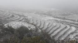 Video: Tuyết phủ trắng Y Tý như trời Âu, khách du lịch phấn khích tột độ