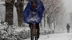 Những trận bão tuyết kinh hoàng đầu năm mới tại Nhật Bản khiến ít nhất 8 người thiệt mạng
