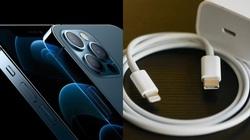 """Apple bỏ củ sạc và lời """"phanh phui"""" sự thật của Motorola"""