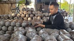 Ông chủ cửa hàng sửa xe máy bén duyên nghề trồng nấm bào ngư, mỗi tháng lãi 25 triệu