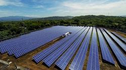 Hé lộ ông chủ nghìn tỷ đứng sau Dự án điện mặt trời lớn nhất Đông Nam Á vừa bị phạt