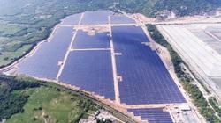 Vốn FDI vào ngành năng lượng tái tạo tăng 38 lần trong 5 năm