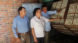 Hội Nông dân tỉnh Bắc Ninh: Kết nạp mới gần 2.100 hội viên, hàng chục nghìn hộ được hỗ trợ vốn vay