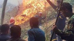 Đốt thực bì gây cháy đồi nhà, suýt lan sang cả rừng phòng hộ