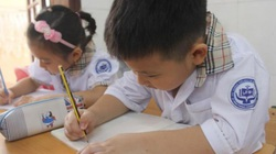 TP.HCM: Không giao bài tập về nhà đối với học sinh học 2 buổi/ngày ở trường