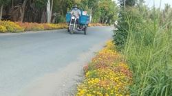 """Hội Nông dân TP HCM """"biến"""" hàng loạt đường rác thành đường hoa ở nông thôn"""