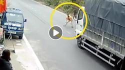 Clip: Người đàn ông lao vào đầu xe tải xin tiền khiến tài xế phanh cháy lốp