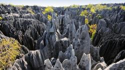 """Khám phá """"khu rừng đá"""" vô cùng độc đáo ở Madagascar"""