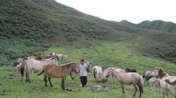 Xây dựng nông thôn mới ở xã nghèo Suối Tọ