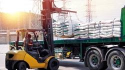 Nghịch lý: Doanh nghiệp mía đường điêu đứng hậu Hiệp định ATIGA, cổ phiếu vẫn tăng 70%
