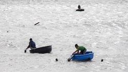 Khánh Hòa: Ban đêm dân ra biển bơi bắt con gì bé như cọng tăm, trong như thủy tinh mà kiếm tiền triệu mỗi ngày?