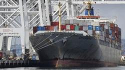 """""""Mờ mắt"""" vì tiền, các hãng vận tải từ chối chở nông sản Mỹ để gửi container rỗng sang Trung Quốc"""
