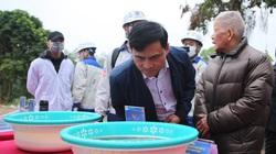 """Clip: Đánh bay mùi hôi thối ở hồ nước bãi rác Nam Sơn, công nghệ nano Nhật Bản """"ghi điểm"""""""