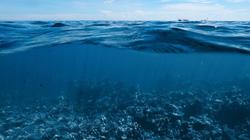 Hé lộ bí ẩn dưới đáy Đại Tây Dương