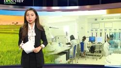Bản tin Thời sự Dân Việt 29/1: Thêm hơn 100 ca nhiễm Covid-19, công tác phòng dịch đang siết chặt thế nào?