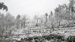 Tuần tới Hà Nội mưa nhỏ vài nơi, miền Bắc tiếp tục rét đậm, rét hại