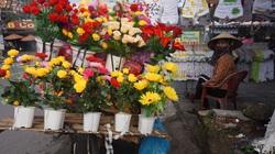 Mưu sinh ngày giáp Tết: Mỏi rã chân đẩy xe bán cát, hoa giả ngày kiếm 100.000 đồng