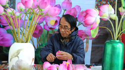 Những cánh hoa sắc màu ở làng hoa giấy 300 năm tuổi