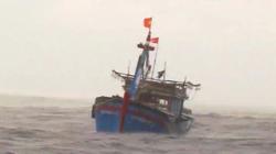 Bình Định: Tàu cá bất ngờ bị gãy trục láp, 7 ngư dân đang lênh đênh trên biển