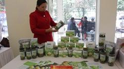 Chùm ảnh: Các sản phẩm OCOP được xếp hạng và nâng sao ở Sơn La