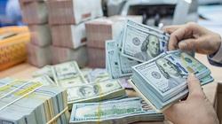 Bất ngờ điều chỉnh phương án mua ngoại tệ, Ngân hàng Nhà nước toan tính gì?