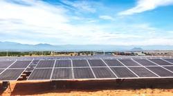 T&T Group đồng loạt hòa lưới 3 nhà máy điện mặt trời