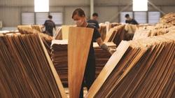 Xuất khẩu gỗ quyết gom đủ 14 tỷ USD trong năm 2021