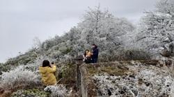 Băng giá phủ trắng đỉnh Phja Oắc, du khách nô nức check-in