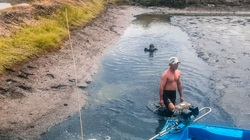 Tát đìa ăn Tết ở miền Tây, trẻ lên sáu cũng bắt được con cá đồng ú nu