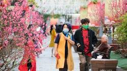 Hà Nội, Sapa, Đà Nẵng đồng loạt mở cửa đón du khách du lịch Tết Nguyên đán.