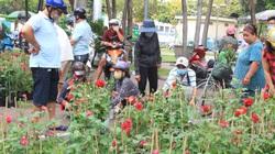 Sáng 30 Tết, người Sài Gòn kéo nhau đi mua hoa hỗ trợ nhà vườn, người bán