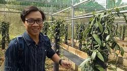 Đồng Nai: Trồng cây lạ, 4 năm mới ra hoa, hoa chỉ nở 1 ngày, 9 tháng trái mới chín bán đắt như vàng