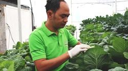 Lâm Đồng: Nghe bí quyết làm nông nghiệp công nghệ cao trồng đâu thắng đấy của ông giám đốc nông dân có bằng thạc sỹ