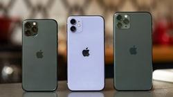 Chiếc iPhone nào được bán nhiều nhất trong năm 2020?