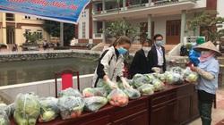 Hải Dương: Mạng xã hội xôn xao kêu gọi, nông dân hy vọng được giải cứu bắp cải, su hào, cà chua, cà rốt