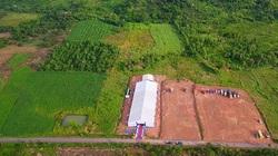 """Vì sao 2 tập đoàn lớn chọn Tây Nguyên làm """"đất vàng"""", xây dựng các khu nuôi heo, gà """"khủng""""?"""