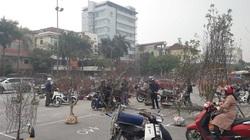 """Thái Nguyên: Quất cảnh, đào Tết đổ xuống phố nườm nượp, nhưng """"đốt đuốc giữa trưa"""" mới thấy người mua"""