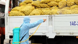 Quảng Ninh kết nối tiêu thụ thành công nông sản cho người dân bị ảnh hưởng bởi dịch Covid-19