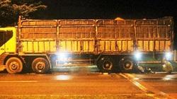 Ninh Thuận: Cần điều tra làm rõ vụ 3 thanh tra giao thông bị khởi tố