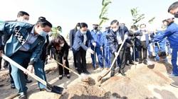 Bí thư, Chủ tịch Hà Nội trồng cây đầu năm, kêu gọi người dân trồng 1 tỷ cây xanh