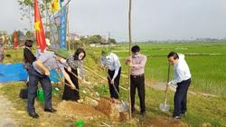 Nghệ An: Hội Nông dân tỉnh vừa trồng cây sao đen với số lượng 300 cây ở huyện nào?