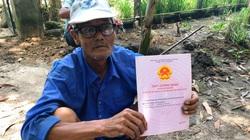 Bình Định: Người dân thắc mắc cán bộ được cấp đất rừng, Bí thư huyện lên tiếng