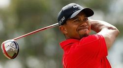 """""""Siêu hổ"""" Tiger Woods giàu """"khủng khiếp"""" như thế nào?"""