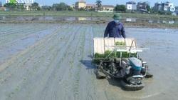 """Hải Dương: Đưa cơ giới hóa vào sản xuất nông nghiệp, nông dân Tân Kỳ """"xóa sổ"""" đất ruộng bỏ hoang"""