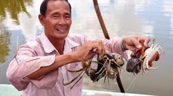 """2 đặc sản """"đỉnh của chóp"""" ở Cà Mau lọt top 100 món ăn đặc sản Việt Nam là loại nào?"""