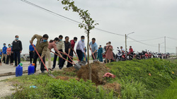 """Agribank miền Trung hưởng ứng phong trào """"Tết trồng cây đời đời nhớ ơn Bác Hồ"""" năm 2021"""