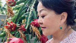Chiêm ngưỡng nhà vườn 1.000m2 của danh ca Hương Lan và chồng kĩ sư tại Mỹ